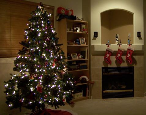 Christmas Tree 2007
